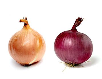 Zerella Onions