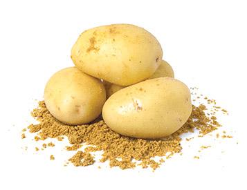 home-vege-potato_v2
